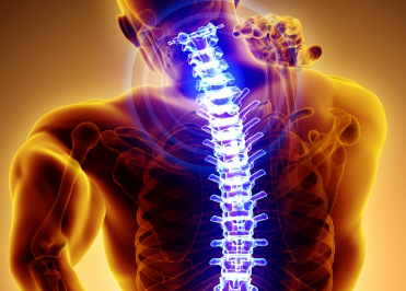 Schmerzen in der Wirbelsäule
